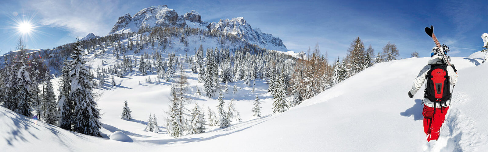 Winter excursion & Alpine skiing tours